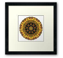 """Carousel Kaleidescope""  A Collaboration Framed Print"
