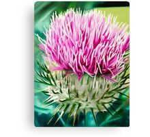 Grey Lady Thistle - oil painting of a wild thistle Canvas Print
