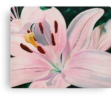 Lily Luster - oil painting of a lily Canvas Print