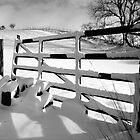 Snow gate by sandyprints