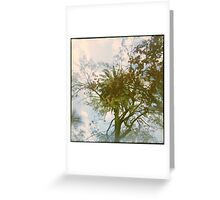 The City of Trees Greeting Card