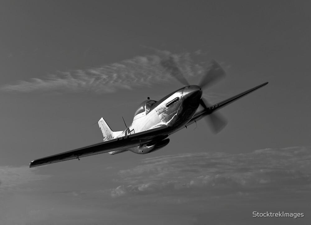 P-51D Mustang by StocktrekImages