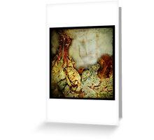 Anthropologie Window Dress Greeting Card