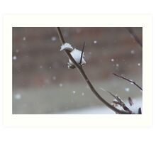 My Catch - Snow Fall Art Print