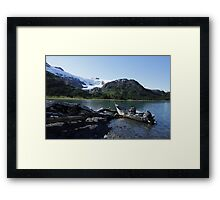Alaskan Pleasures Framed Print