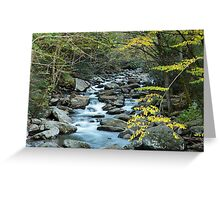 Silken Splendor Greeting Card
