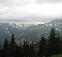 Mountain Path - Allmendhubel, CH by Danielle Ducrest