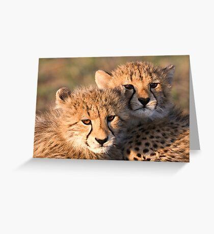 Sibling Comfort Greeting Card