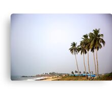 Palms on a beach in Africa Canvas Print
