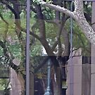 100 South Congress - Window Reflection - Downtown - Austin Texas Series - 2011 by Jack McCabe