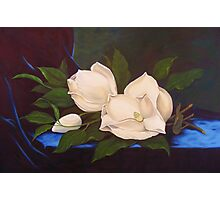 Magnolias, After MJ Heade Photographic Print