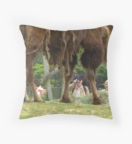"""Yes I know, my legs are beautiful!"" Throw Pillow"