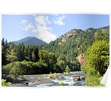 Elhwa River, Olympic National Park, Washington Poster