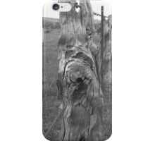 Lasting time  iPhone Case/Skin