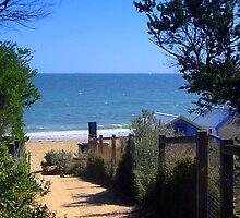 Dendy Beach - Brighton - Victoria - Australia by bayside2