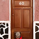 Potosi, Bolivia 4295 by Mart Delvalle