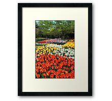 Botanical Garden Framed Print