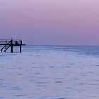 Bokeelia Pier at Dusk by Jaee Pathak