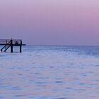 Bokeelia Pier at Dusk by Jaee Pathak