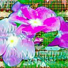 Purple periwinkle design by ♥⊱ B. Randi Bailey