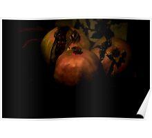 Pomegranates Still Poster