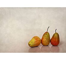 Fruitful Days Photographic Print