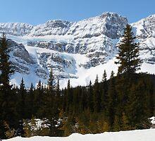 Snowy rocky wall by zumi
