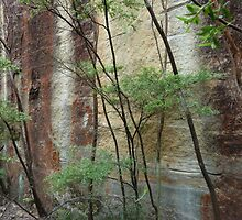 Girl in the rock - Wollemi National Park by DashTravels