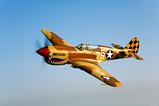 P-40N Warhawk by StocktrekImages