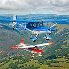Champion Aircraft Citabrias by StocktrekImages