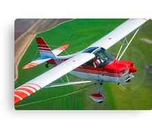 Champion Aircraft Citabria Canvas Print