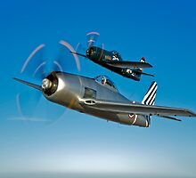 Two Grumman F8F Bearcats by StocktrekImages