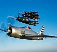 Grumman F8F Bearcats & F7F Tigercats by StocktrekImages