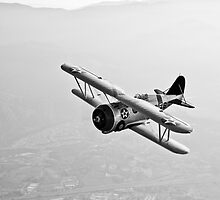 Grumman F3F biplane. by StocktrekImages