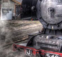 Maldon steam Sticker