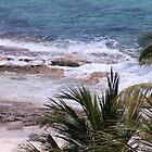 Beach Cozumel by Bauerphoto