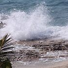 Cozumel Waves by Bauerphoto