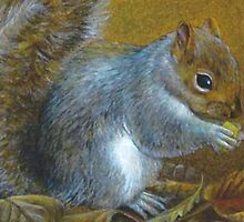 Portrait of a grey squirrel by Sarah Trett