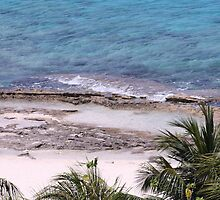 Cozumel Beach Waves by Bauerphoto