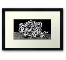 LEOPARD CAT Framed Print