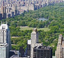 Overlooking Central Park,  New York by Margaret  Hyde