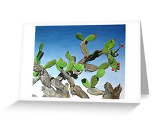 Nopal Tree - oil painting of cactus growing in Mexico Greeting Card