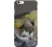 What is new? iPhone Case/Skin
