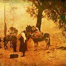 Rural Scene - Greece 1969 by pennyswork