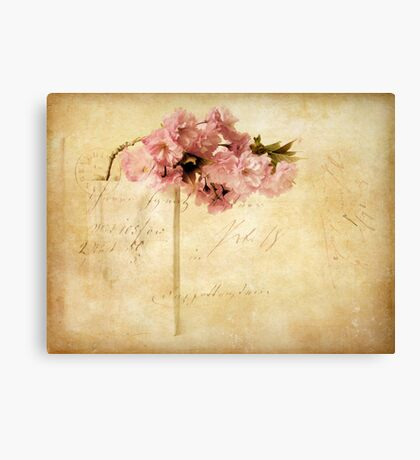 Vintage Cherry Canvas Print