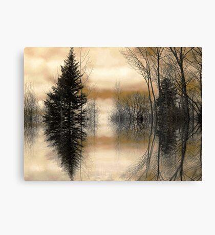"""Mirror"" Canvas Print"