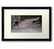 Reach for the stars....yawn for that dream Framed Print