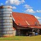 Carolina Country Barn by krishoupt