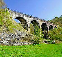 Monsal Dale Viaduct by Rod Johnson