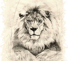 Lion King by Barb Miller